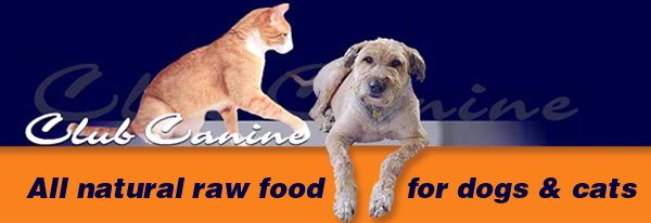 Raw Food Cats Vancouver